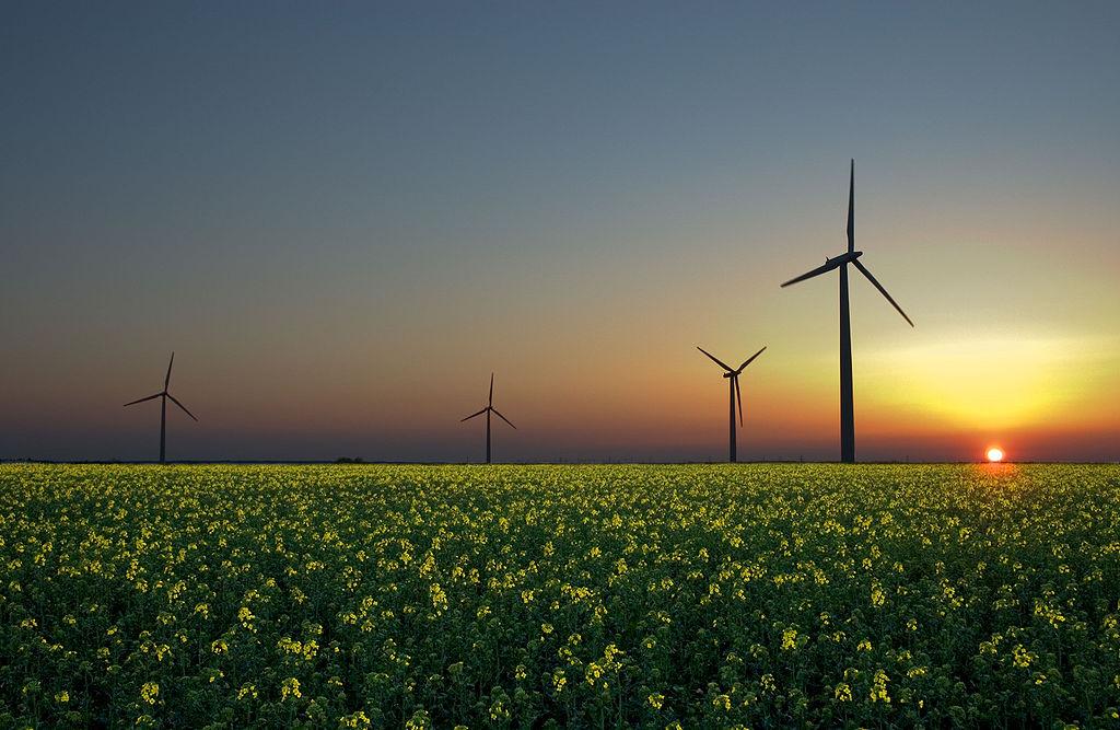 Năng lượng tương lai - Renewable energy