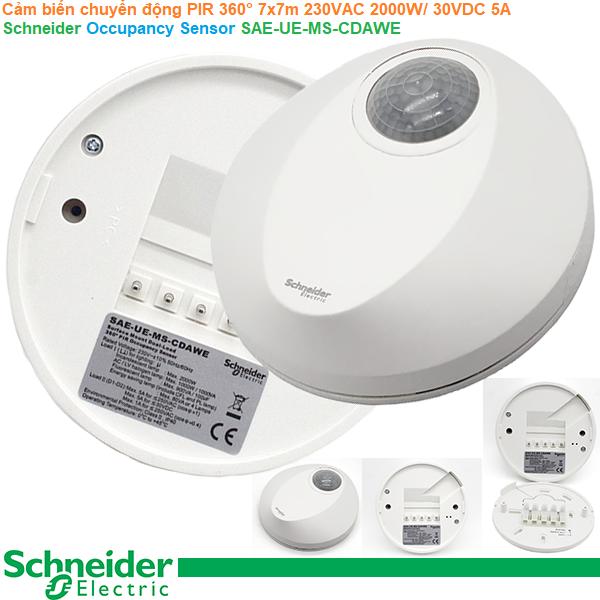 Cảm biến chuyển động PIR 360° 7x7m 230VAC 2000W/ 30VDC 5A  - Schneider - Occupancy Sensor SAE-UE-MS-CDAWE