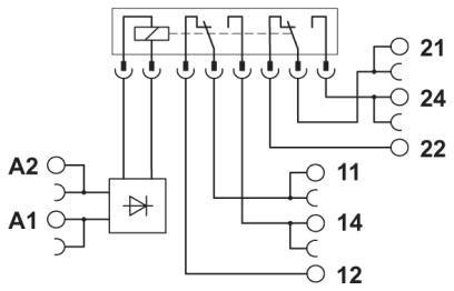 Circuit diagram Relay module rơle PLC-RSC 2PDT 24vDC 5V 6A - Phoenix Contact - Relay Module - PLC-RSC- 24DC/21-21 - 2967060